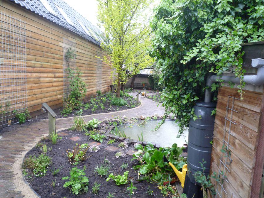 langgerekte tuin (2)